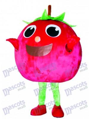 Tomate rojo Disfraz de mascota Fruta Vegetal