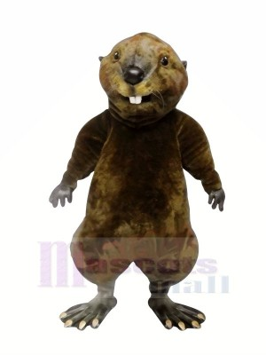 Nutria de alta calidad Disfraz de mascota