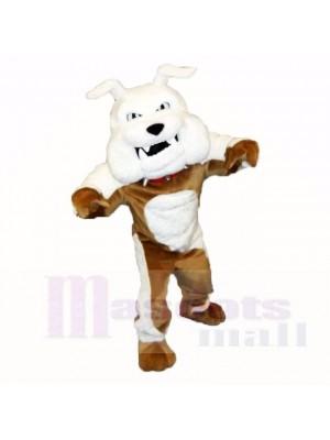 Bulldog de piedra verde Disfraz de mascota