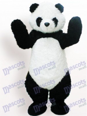 Panda blanco y negro Animal adulto Disfraz de mascota