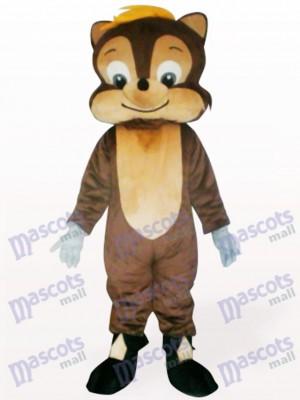 Ardilla encantadora Disfraz de mascota Animal