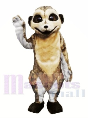 Lindo Suricata Ligero Disfraz de mascota