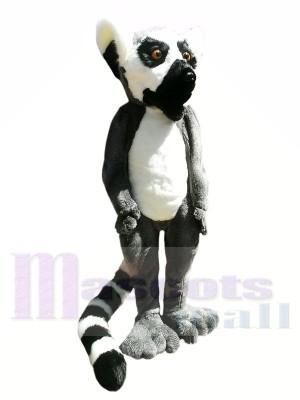 Lémur peludo de alta calidad Disfraz de mascota
