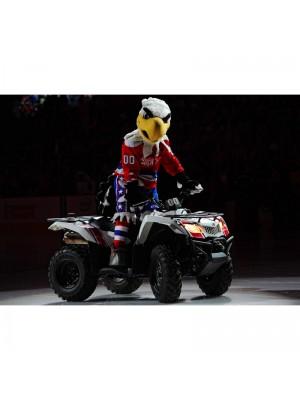 Slapshot del águila calva de Washington Capitals Disfraz de mascota animal