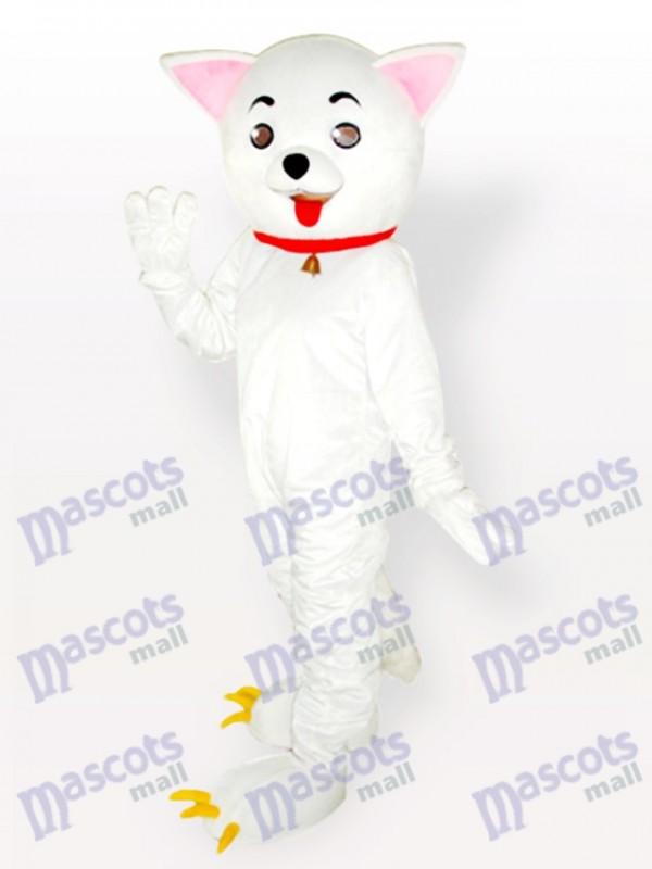 Gatito Disfraz de mascota