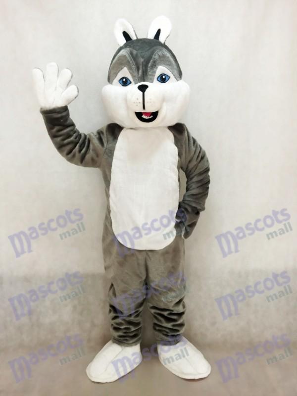 Lindo gris Fornido Perro Disfraz de mascota Animal