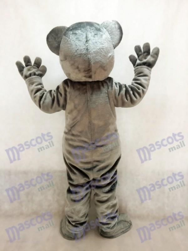 Lindo gris Coala Soportar Disfraz de mascota Animal