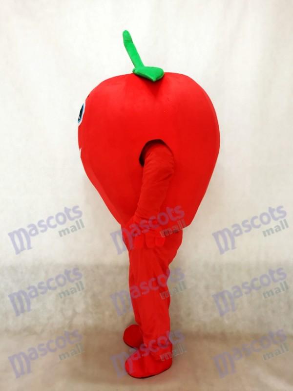 Sonriendo lindo tomate rojo Disfraz de mascota verduras