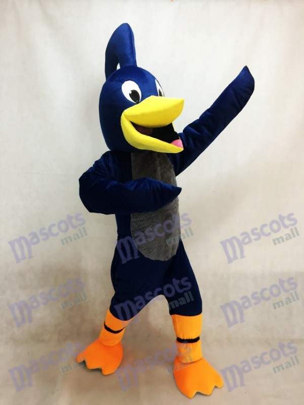 Correcaminos Pájaro Disfraz de mascota
