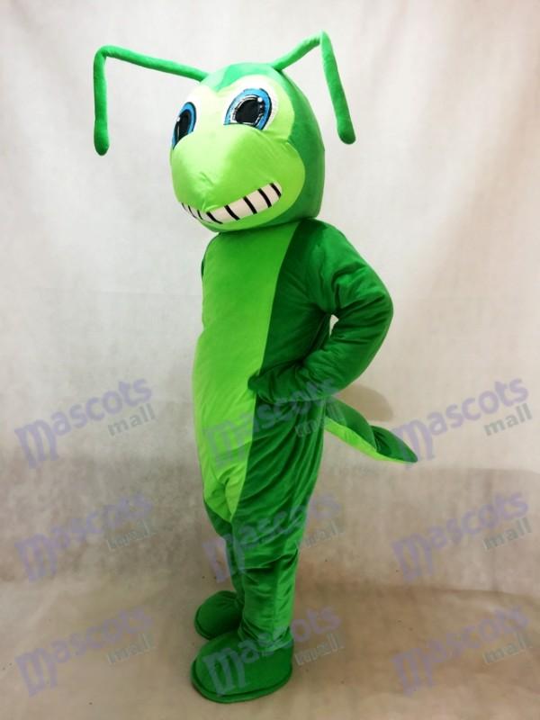 Saltamontes Disfraz de mascota