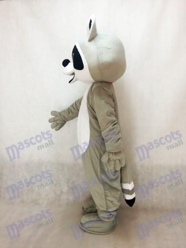 Mapache Disfraz de mascota