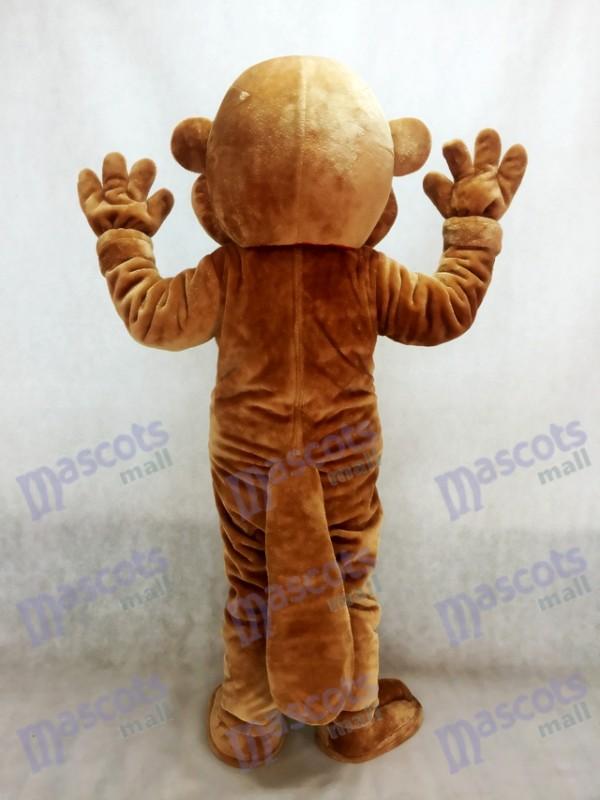 castor Disfraz de mascota