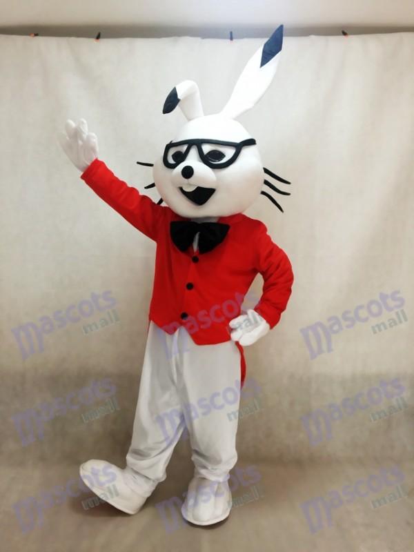 Conejito Disfraz de mascota