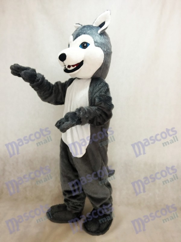 Perro Husky Disfraz de mascota