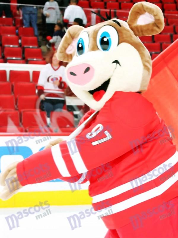 Cerdo de hielo Disfraz de mascota