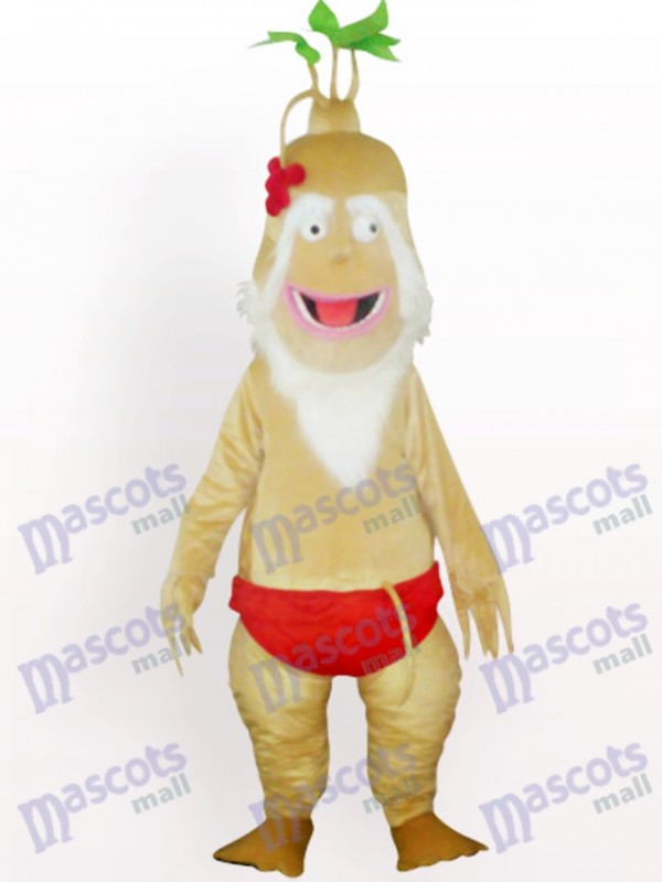 ginseng Disfraz de mascota